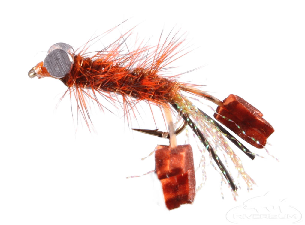 Crayfish, Fighting Craw, Rust, Ritt's