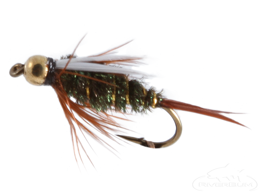 Prince Nymph, Tungsten Bead Head