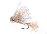 X-Caddis, Tan