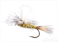 Parachute Hares Ear, Olive