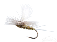 Blue Winged Olive, Para Wulff