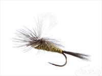 Blue Winged Olive, Parachute