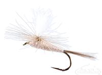 Hendrickson, Parachute