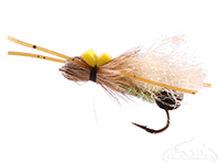 Skwala Stonefly, Bullet Head, Adult