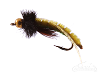 Caddis Poopah, Bead Head, Olive