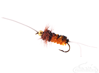 Bitch Creek Nymph, Bead Head, Orange