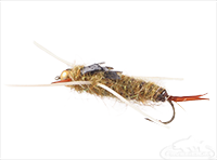 Stonefly Nymph, Bead Head, Rubber Leg, Golden