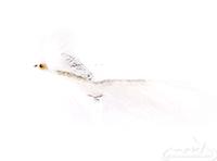 Zonker, Silver-White