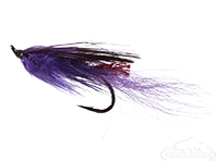 buy General Practitioner, Purple