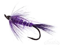 buy Street Walker, Purple