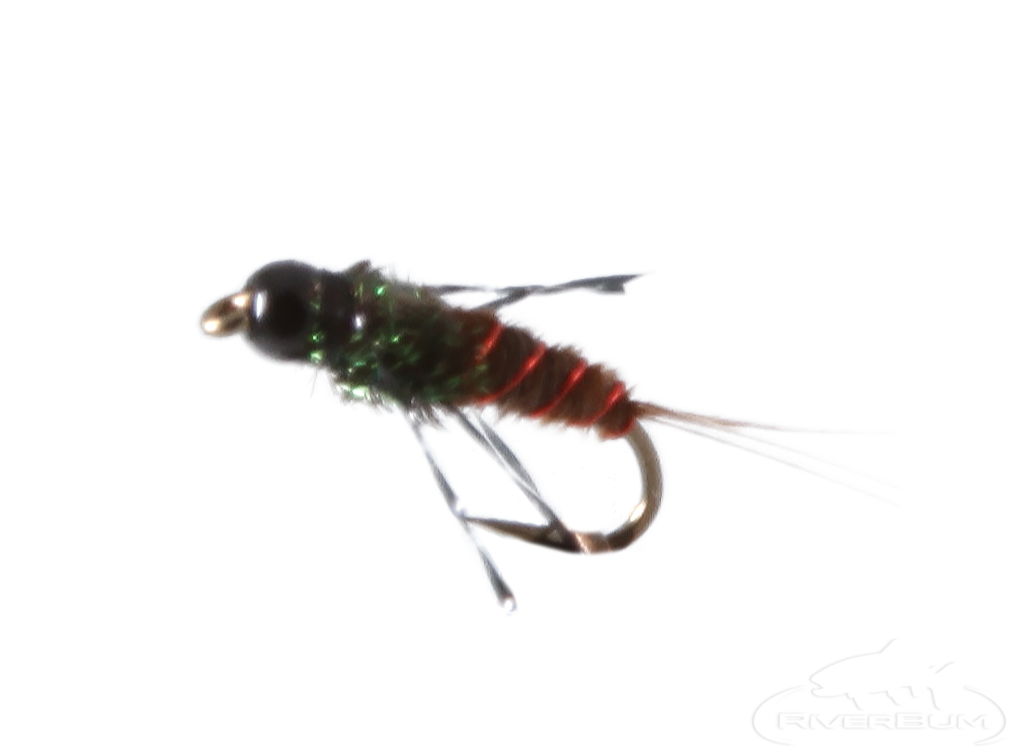 Anatomic Nymph, Pheasant Tail