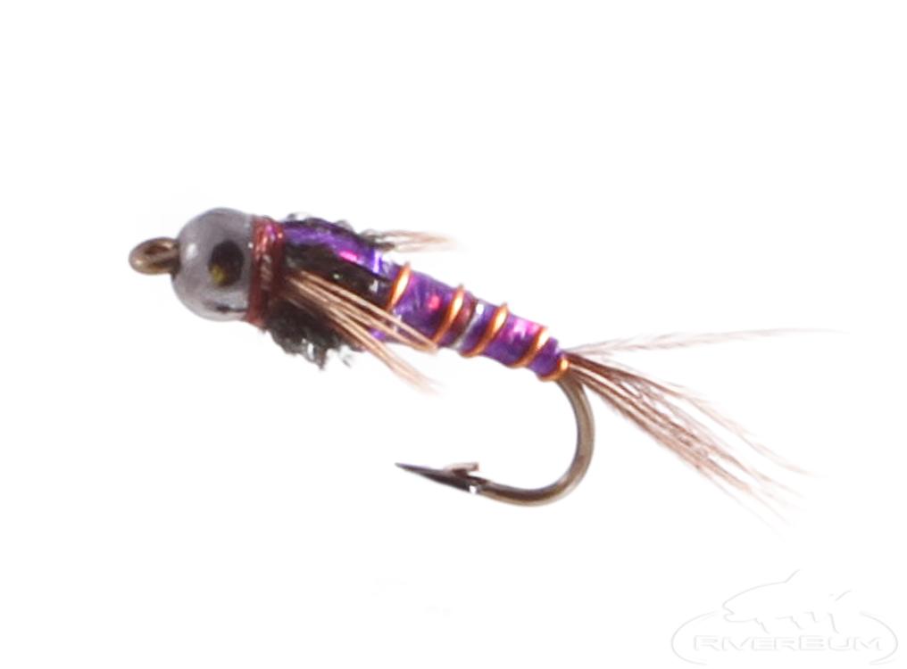 Pheasant Tail, Purple