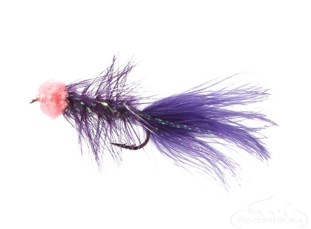 Leech, Egg Sucking, Purple