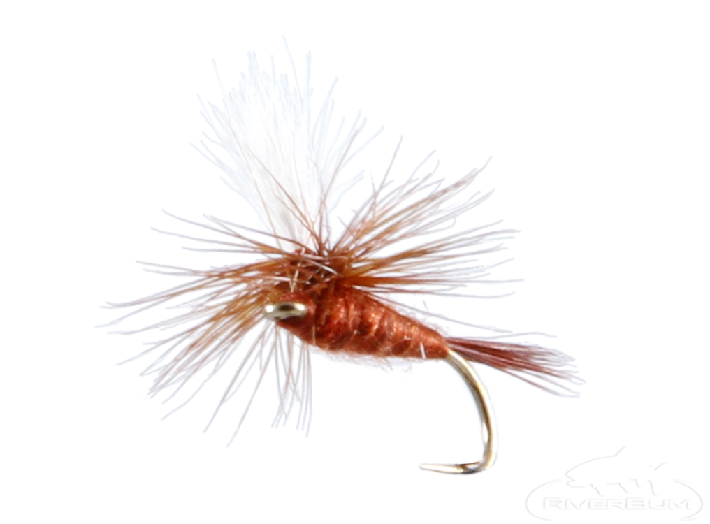 Mahogany, Parachute