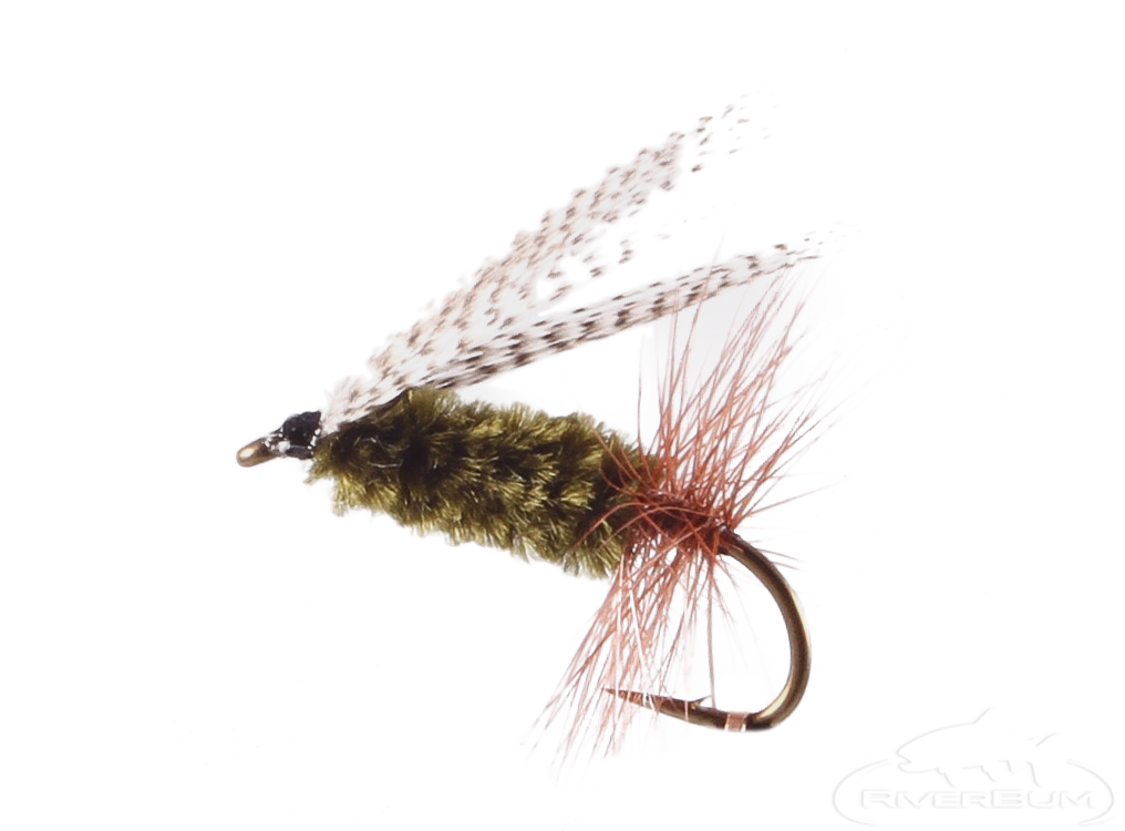 Sheep Creek Special, Bigg's Fly