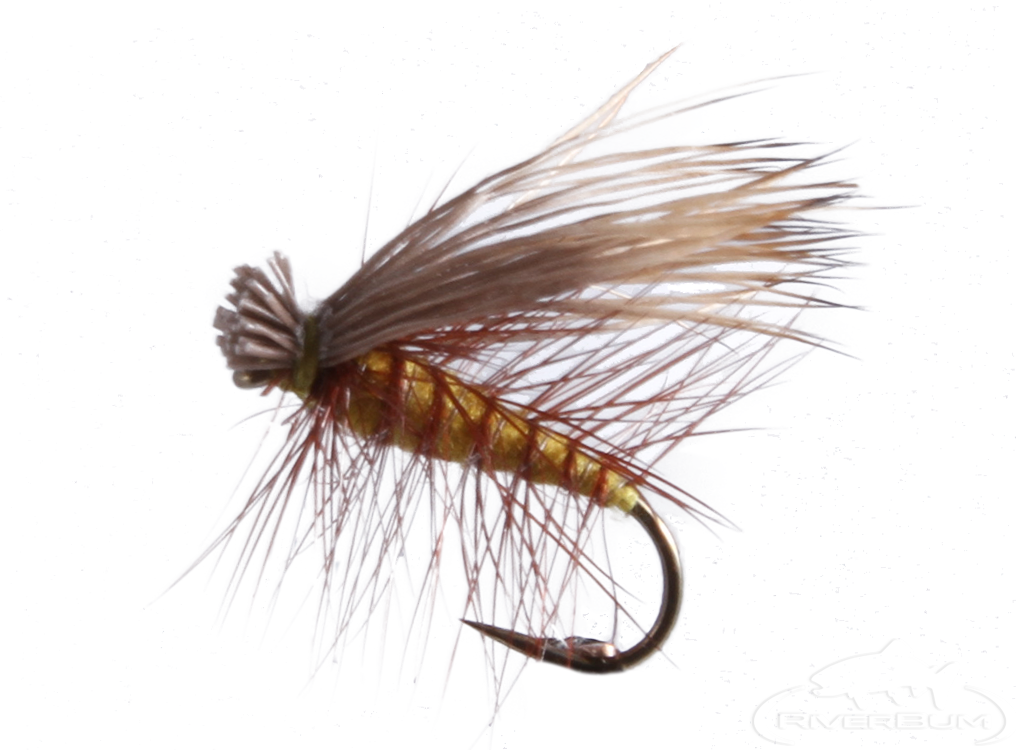 Elk Hair Caddis, Olive