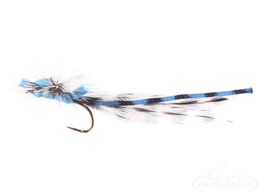Damsel Fly, Foam, Blue