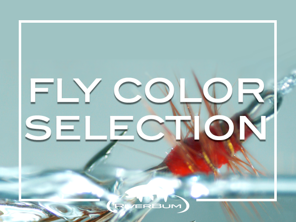 Fly Color Selection
