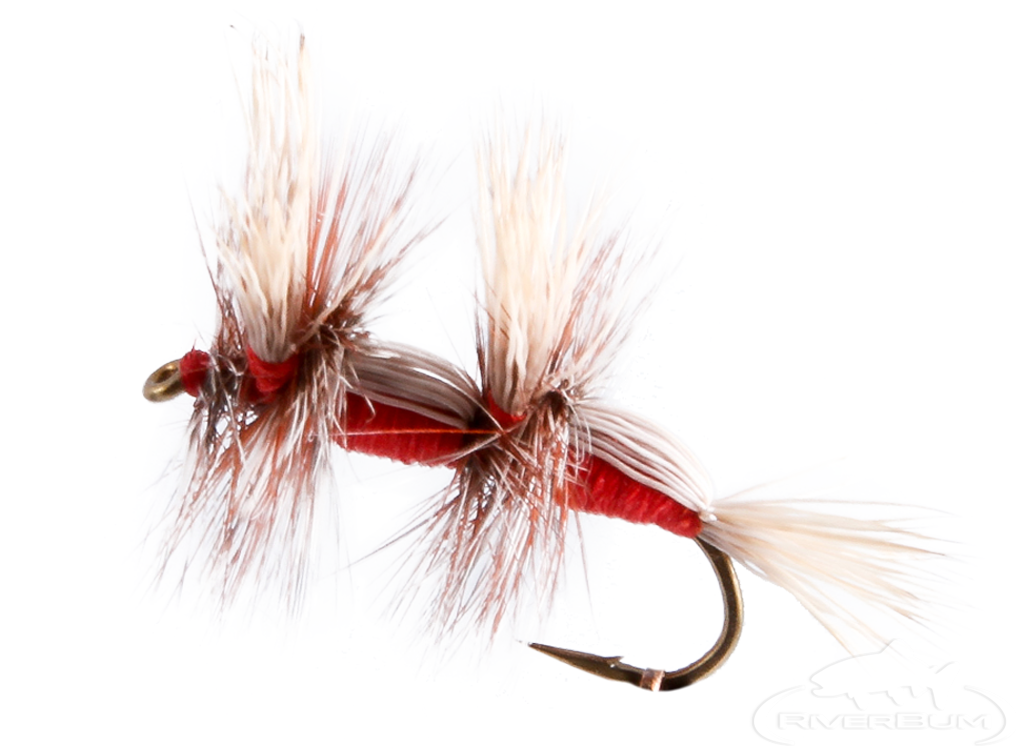 Humpy, Double, Red